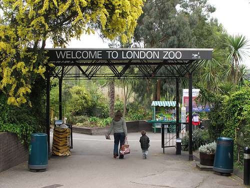 London Zoo Attractions